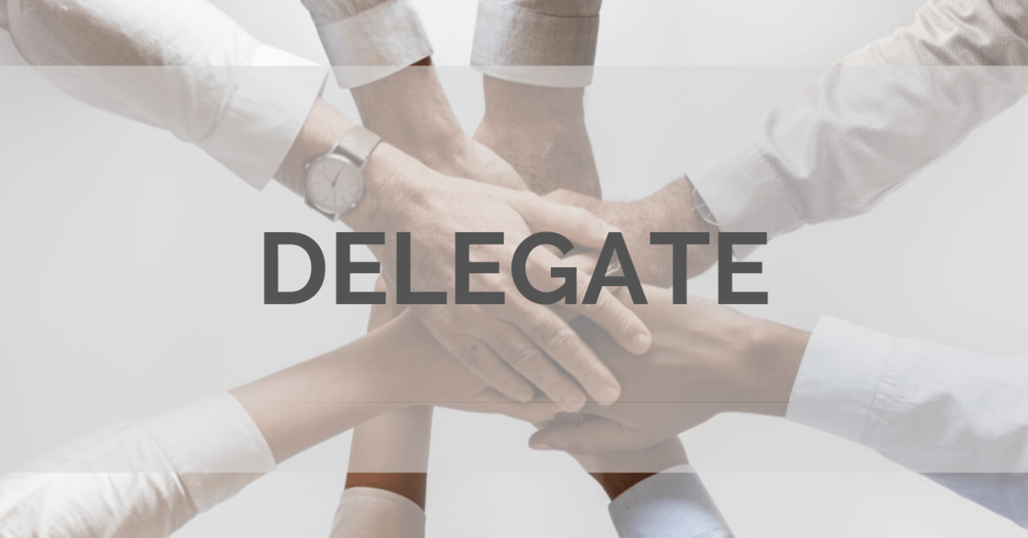 Delegation Issues in Software Development